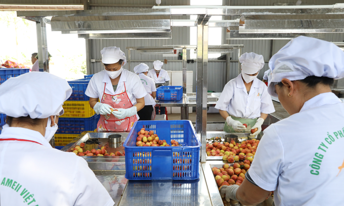 US businesses keen to ramp up imports from Vietnam