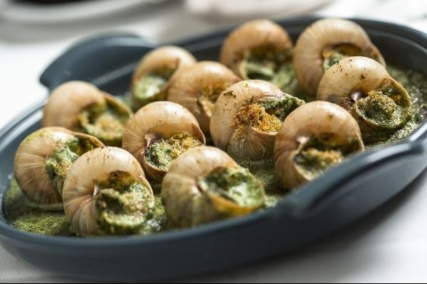 Easy and nutritious snail recipes