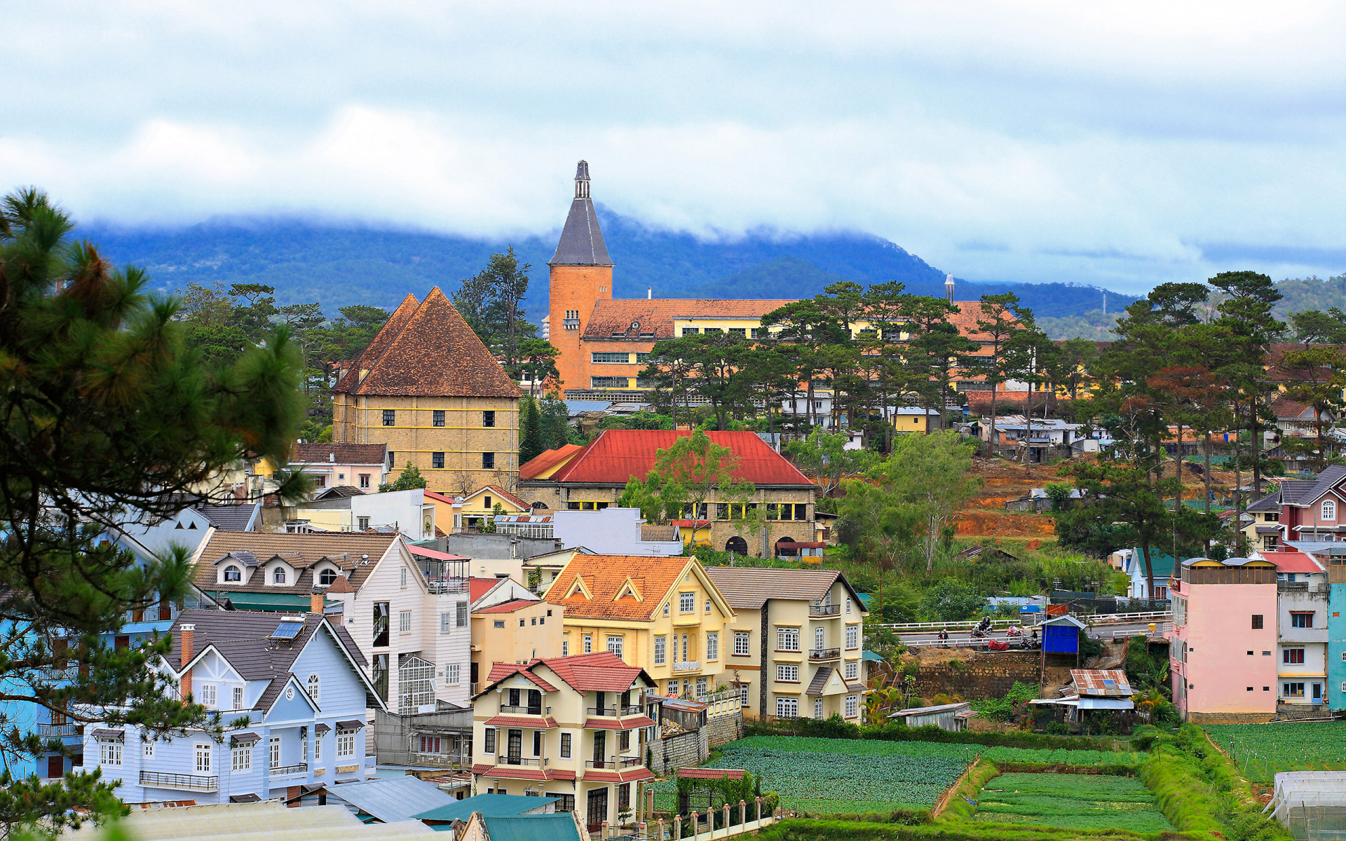 Da Lat City: Where tourists can experience four seasons in a day