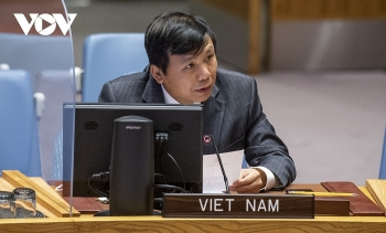 vietnam reaffirms support for malis sovereignty and territorial integrity