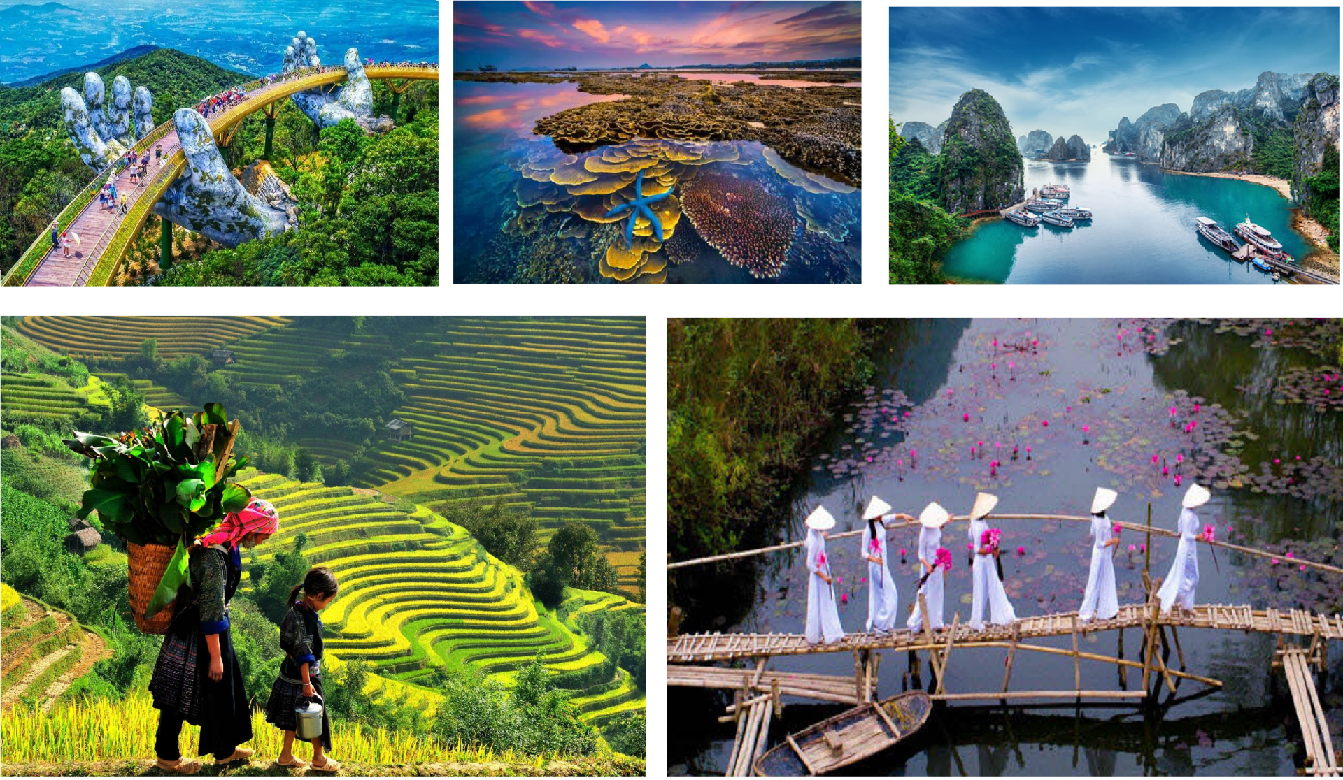 best vietnam travel tips and suggestions